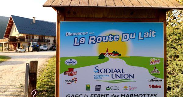 Sur La Route Du Lait
